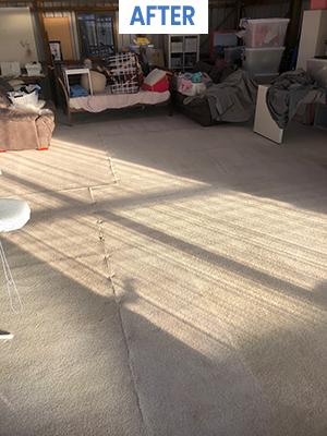 carpet cleaners hobart